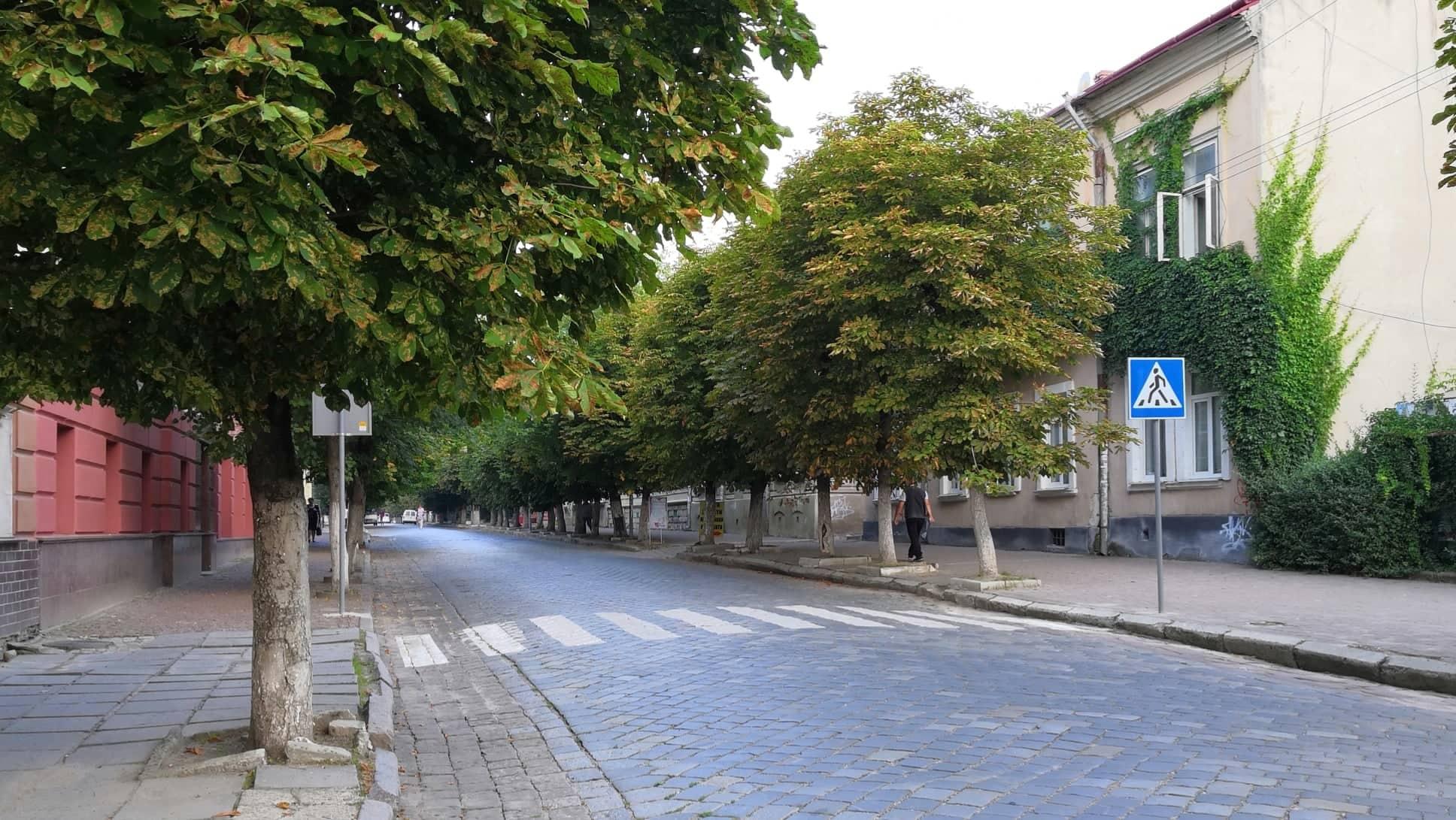 До 1 вересня комунальники відновлять покриття пішохідних переходів біля навчальних закладів міста