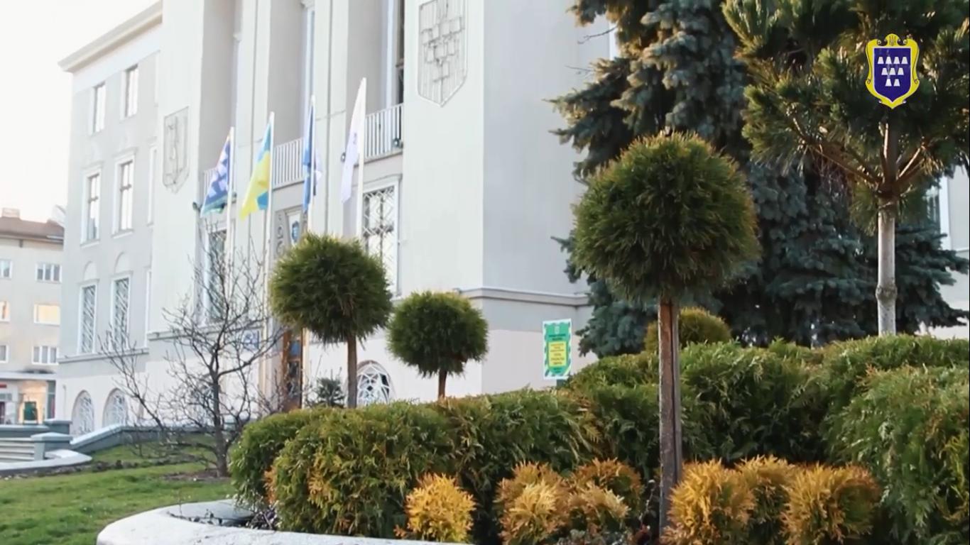 Турбота про довкілля: Більше 1000 нових дерев щороку висаджують у Дрогобичі